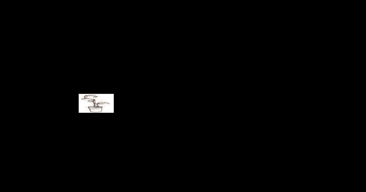 Viewmembeloknya Ujung Akar Ke Arah Mata Air Menutupnya Daun Majemuk Tumbuhan Pada Malam Hari Contoh Gerak Fototaksis Pada Tumbuhan Adalah Jatuhnya Serbuk Sari Ke Kepala Putik Mekarnya Docx Document