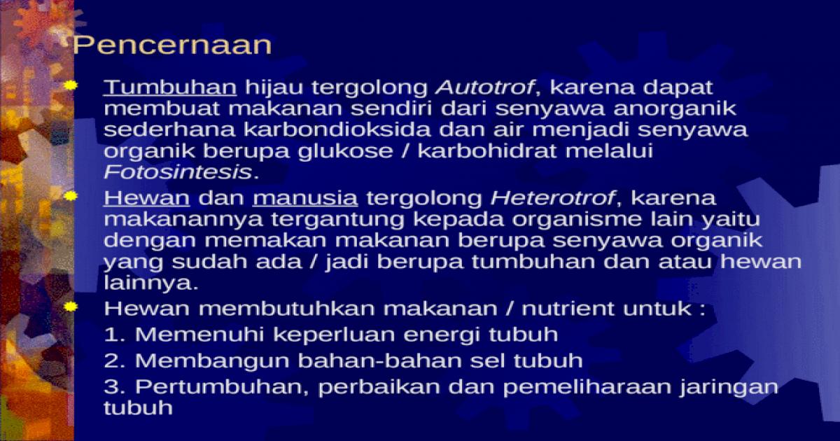 Pencernaan Ppt Powerpoint